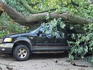 Picture of a tree that has fallen down on a truck in Independence, MO